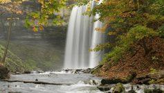 Пейзажи, Природа, Деревья, Водопады