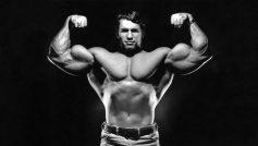 Обои Arnold Schwarzenegger, актер, мышцы, Бодибилдинг для рабочего стола