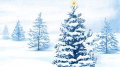 Снег, Рождество, Рождественские елки, Праздники