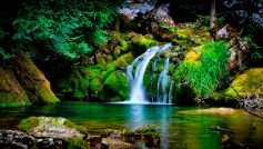 Водопад на камнях с мохом